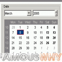 Calendar Component Professional - site licence