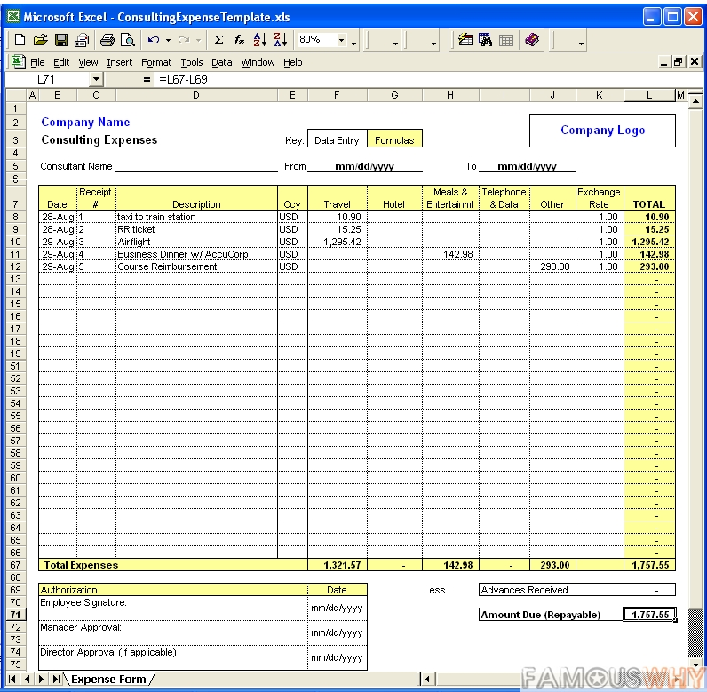 Consulting Expense Excel Template