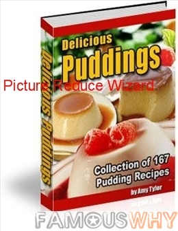Delicious Puddings - Collection of 167 Pudding Rec