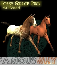 PoseAmation 1 - P4 Horse Gallop Pack